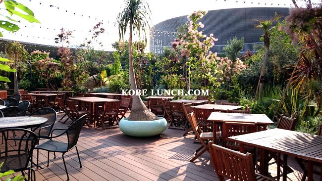 【三宮】トゥーストゥースガーデンレストランで庭園ランチ【神戸】