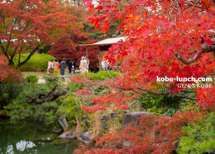 神戸相楽園紅葉