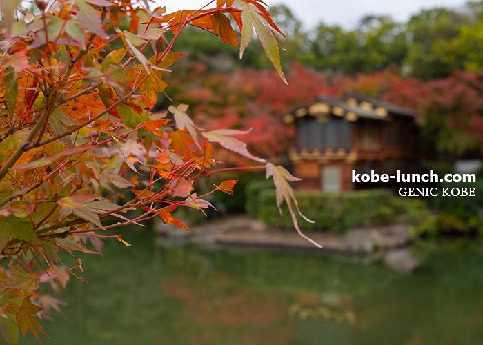 神戸相楽園 紅葉