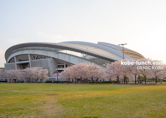 ノエビスタジアム 桜