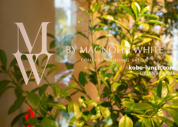 MAGNOLIA WHITE
